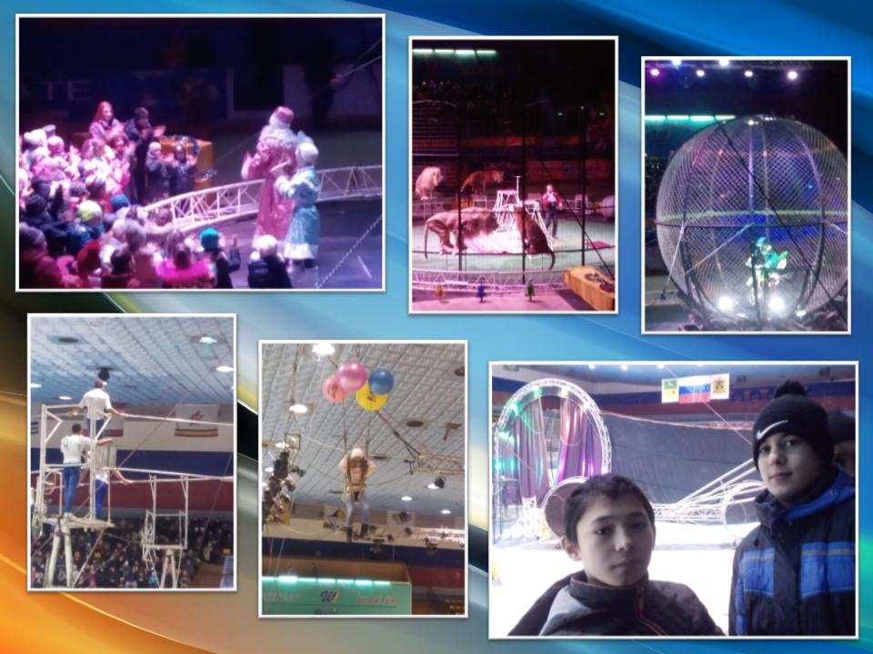 Новогоднее шоу международного Цирка Демидовых